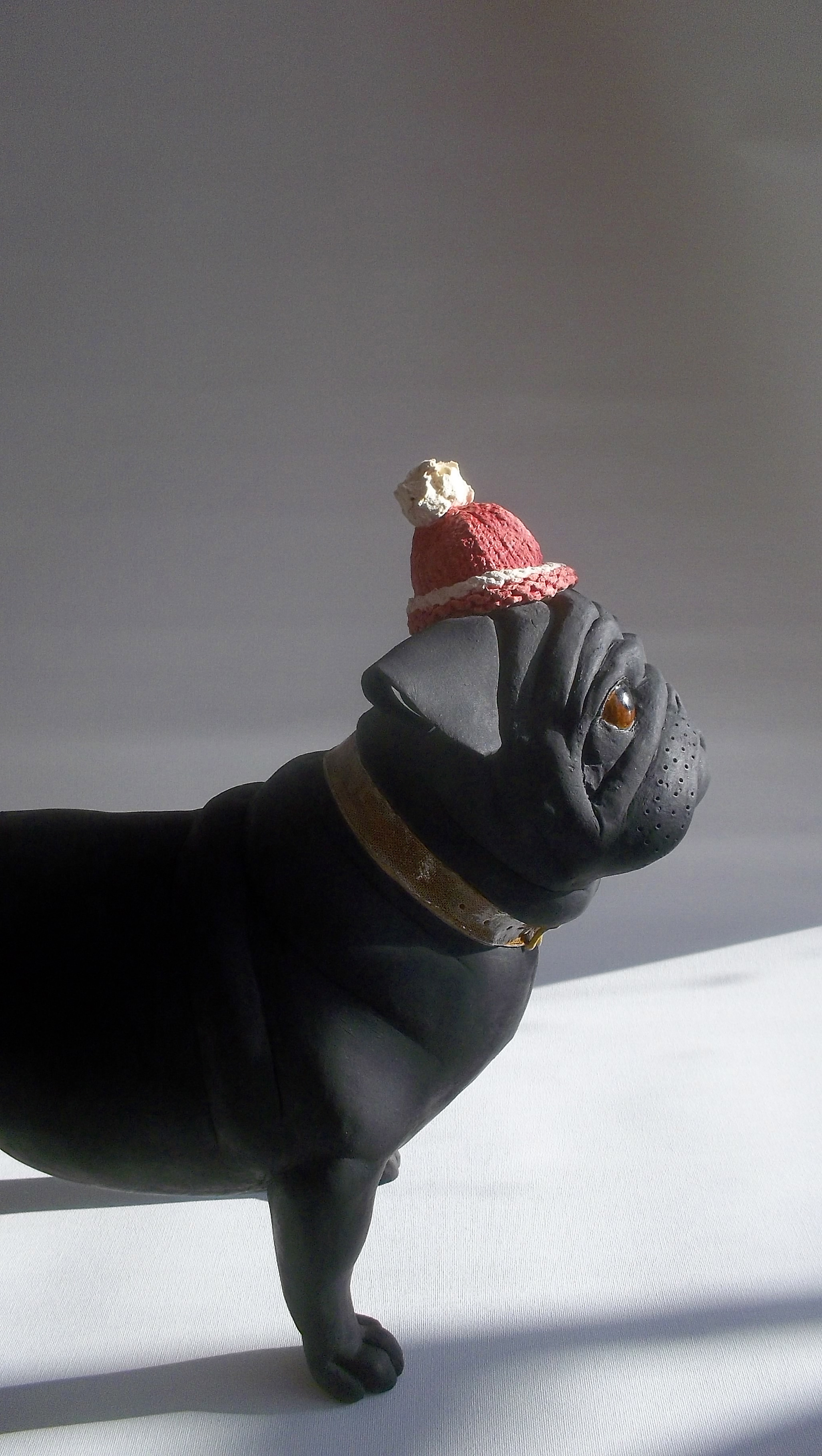 Pug with hat.