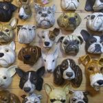 French bulldogs, fox terriers, westies,Pugs, English bull terriers, Boarder Collies, Labrador,Jack Russell, Chihuahua.. r